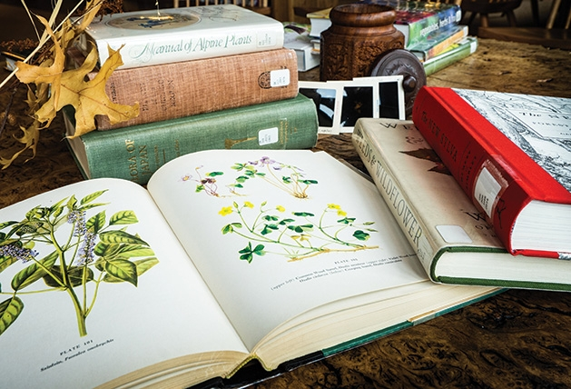 Gardening books piled on a table at the Andersen Horticultural Library at the Minnesota Landscape Arboretum.