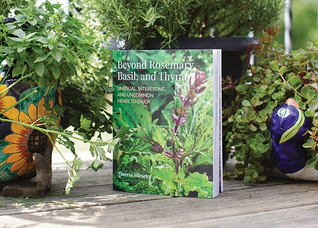 "A copy of ""Beyond Rosemary, Basil and Thyme"" by Theresa Mieseler"